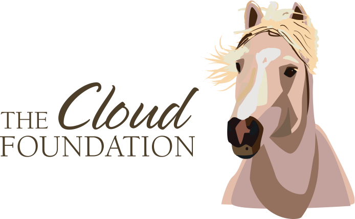 cloud_foundation_logo_cmyk