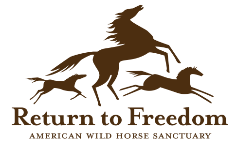 RTF Logo in Ill.7432_NEW